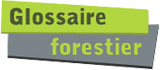 Glossaire forestier
