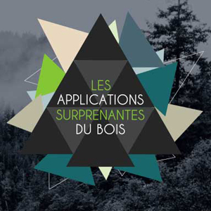 Les applications surprenantes du bois